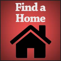 Find-a-Home